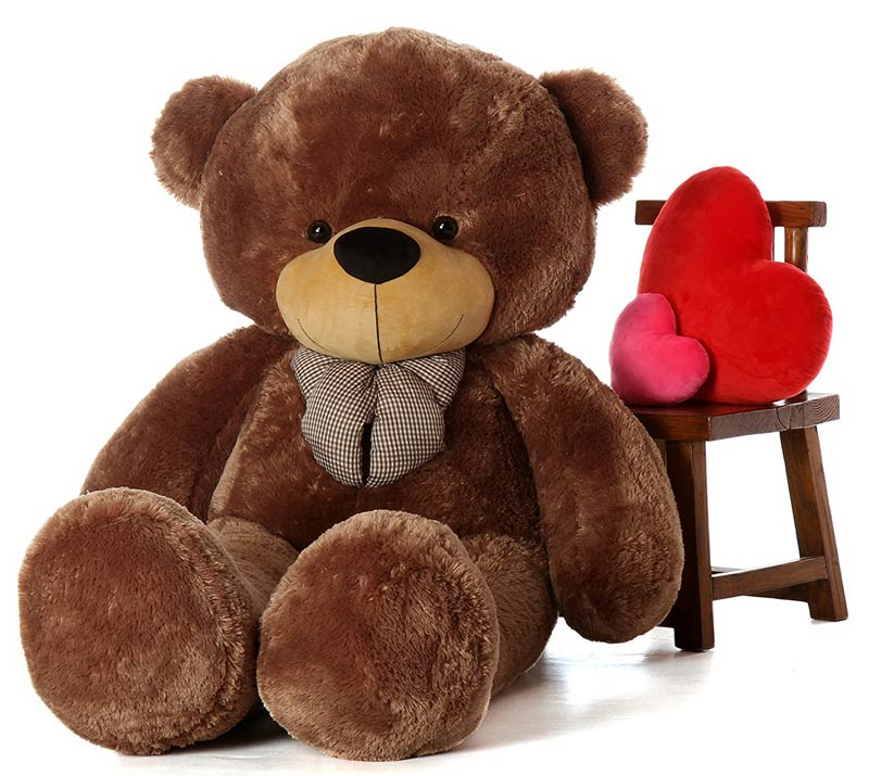 Sunny the giant teddy bear
