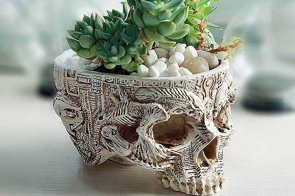 Skull Planter With Alien Carvings