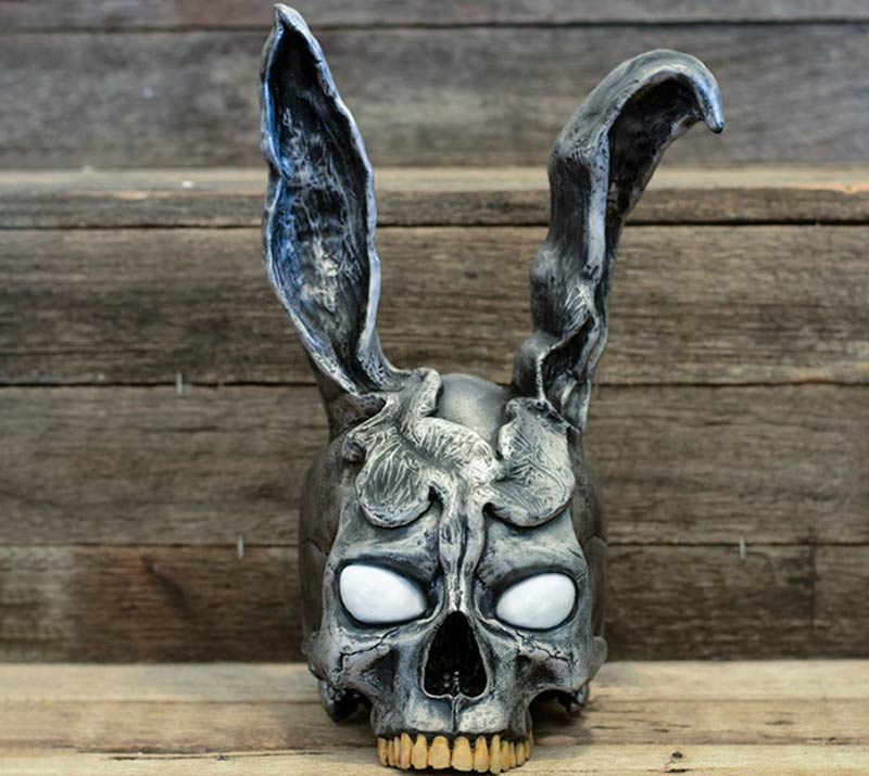 rabbit ear skull