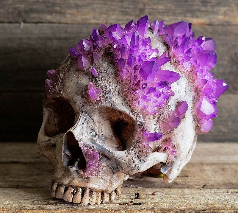 skull with crystal growth