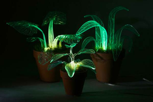 three green  acrylic plant lamps