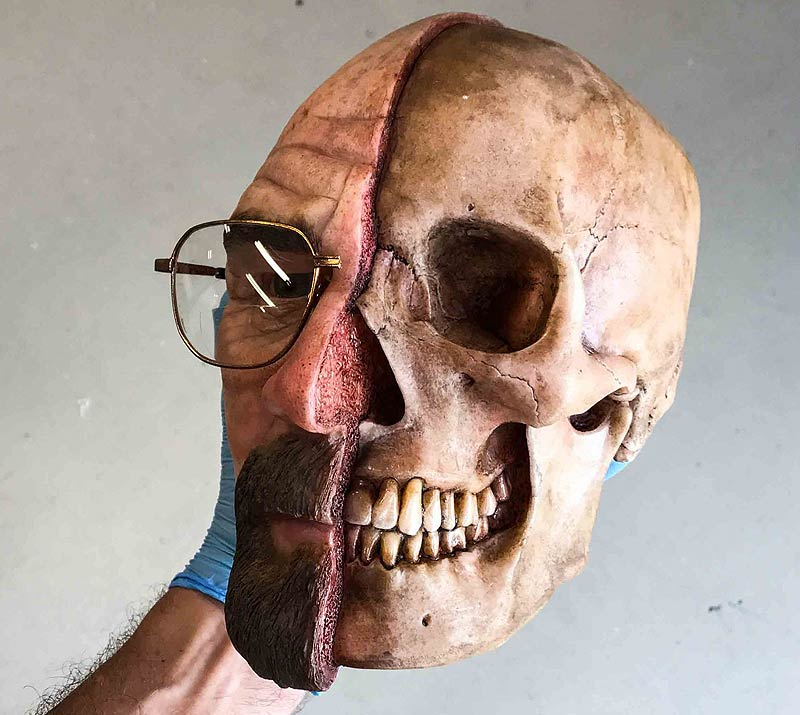walter white half dissection skull