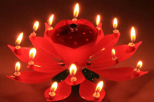 Lotus Flower Birthday Candles