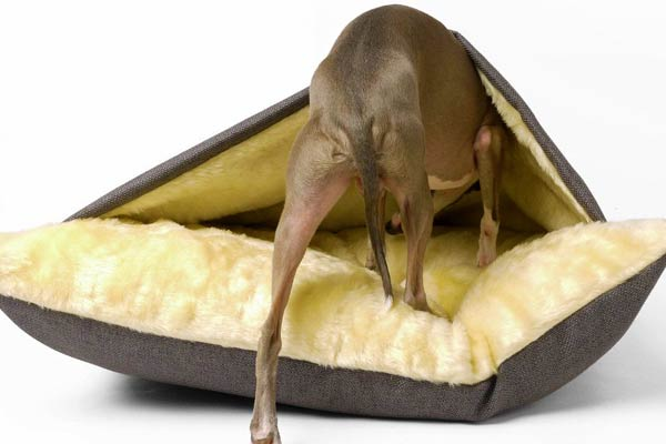Dog Snuggle Bed Weave I Need It